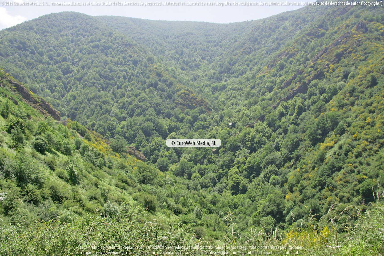 Fotografía de Parque Natural de las Fuentes del Narcea, Degaña e Ibias (Cangas del Narcea) en Cangas del Narcea. Asturias. España.