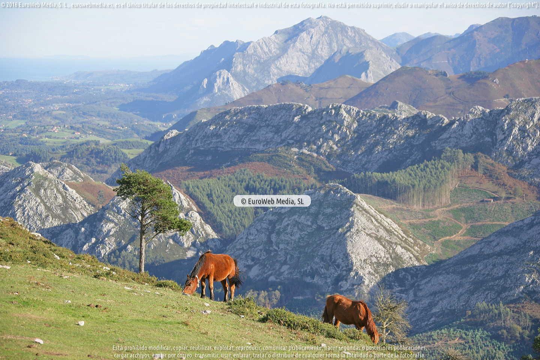 Fotografía de Mirador de El Fito en Parres. Asturias. España.