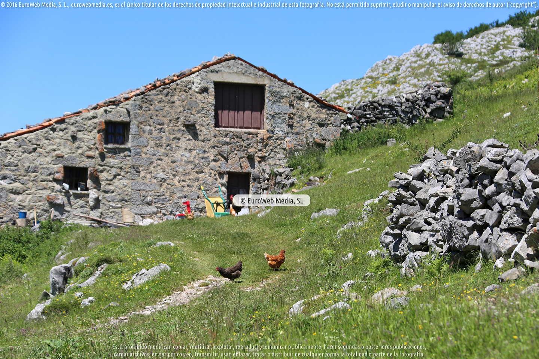 Fotografía de Parque Nacional de los Picos de Europa (Cabrales) en Cabrales. Asturias. España.