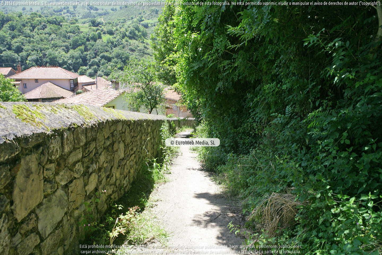 Fotografía de Ruta senderista de El Camín Encantáu (Valle de Ardisana) en Llanes. Asturias. España.