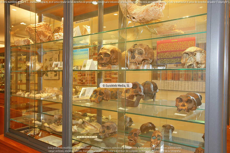 Fotografía de Museo de Geología de la Universidad de Oviedo en Oviedo. Asturias. España.
