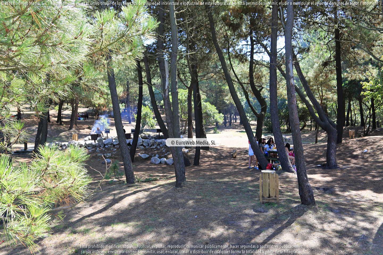 Fotografía de Área recreativa Pinar de Salinas en Castrillón. Asturias. España.
